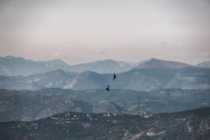 6 coups de cœur pour visiter la Provence