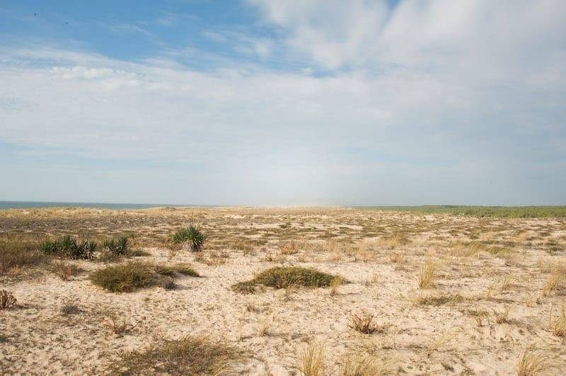 Plage du Cap Ferret dans le Sud Ouest de la France